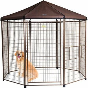 Best Dog Crates 2017 - Buyer\'s Guide - All Best Choices