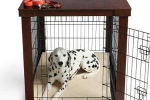 Best Dog Crates